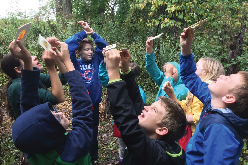 Pilgrim Lutheran students learning outdoors